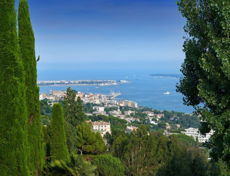 Our luxury real estate agency in Cannes, French Riviera